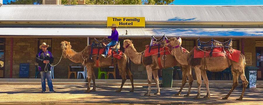 the-family-hotel-tibooburra-1